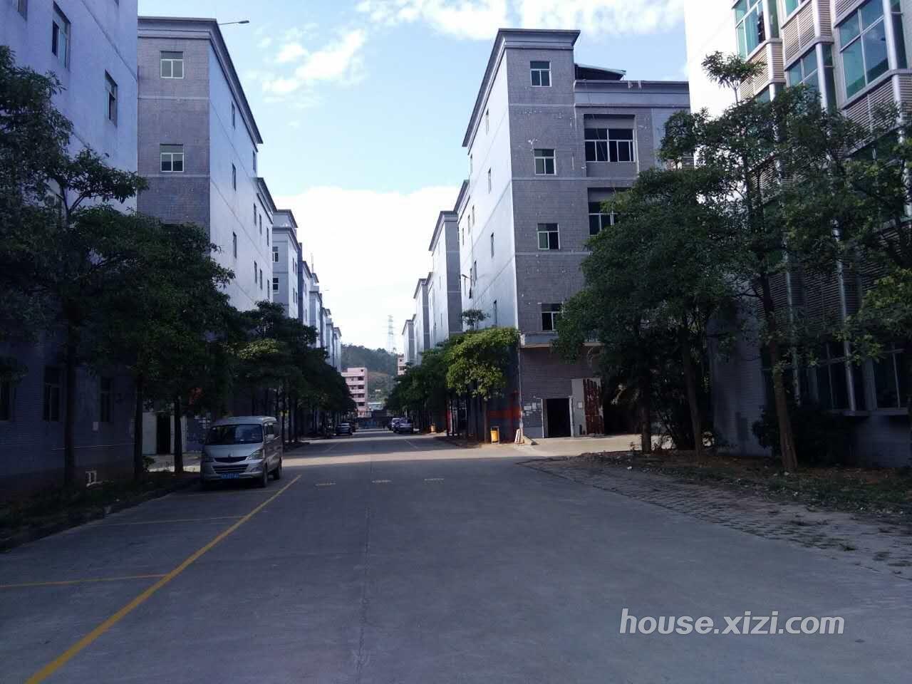 标准楼房 仲恺标准工业园|平南工业园|惠台工业园|松山工业园